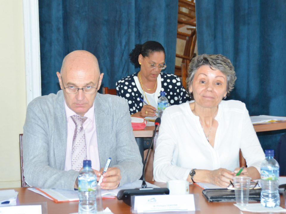Partenariat sur le plateau des Guyanes