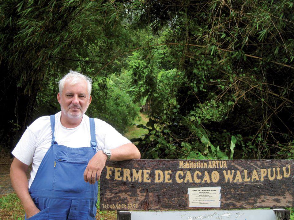 La Ferme de Cacao Walapulu : pour une filière cacao en Guyane