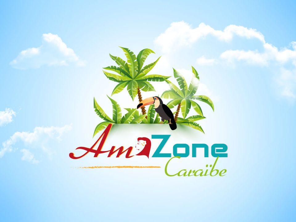 AmaZone Caraïbe sur Canal 10 – Spécial développement des technologies