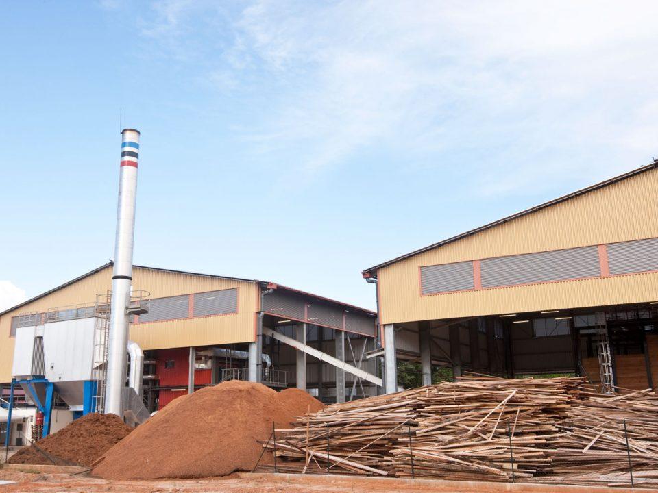 Indépendance énergétique : renforcer les filières bagasse et bois