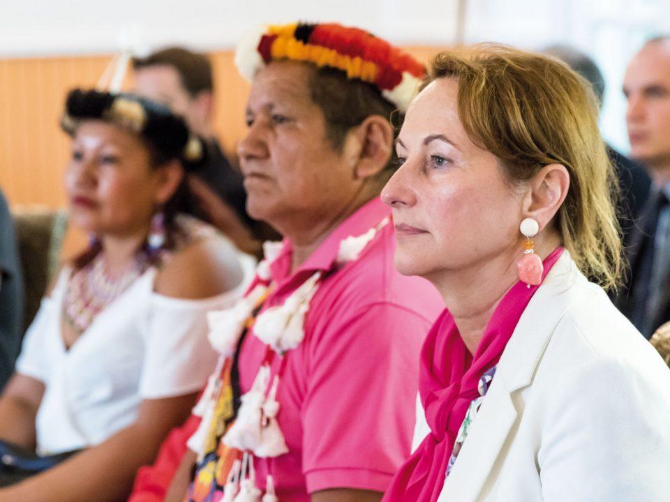 Coraux dans la caraïbe : une stratégie commune pour les protéger