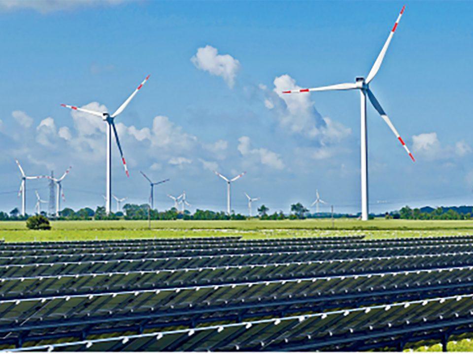 Energies renouvelables : cinq entreprises allemandes en visite aux Antilles françaises