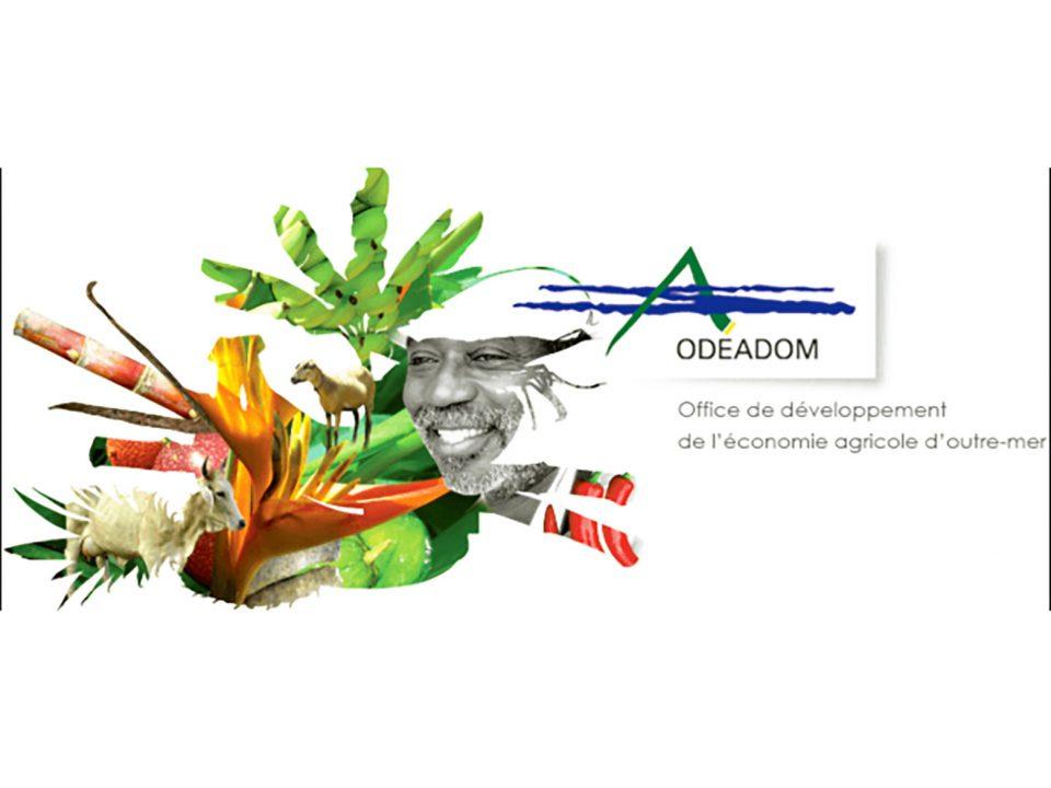 Nomination à l'Odéadom : de deux choses l'une…