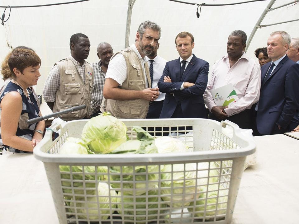 Chlordécone : les premiers pas d'Emmanuel Macron