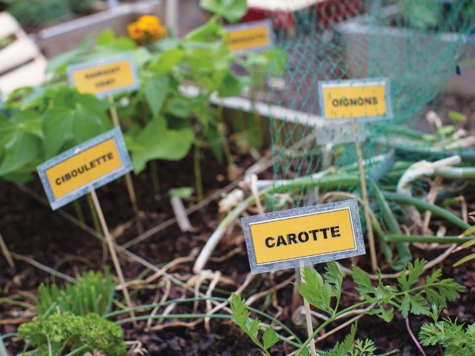 Produits phytosanitaires: Nouvel appel à projets Ecophyto