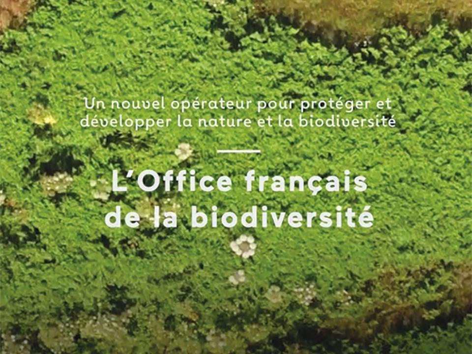 Biodiversité : bientôt un nouvel Office français de la biodiversité