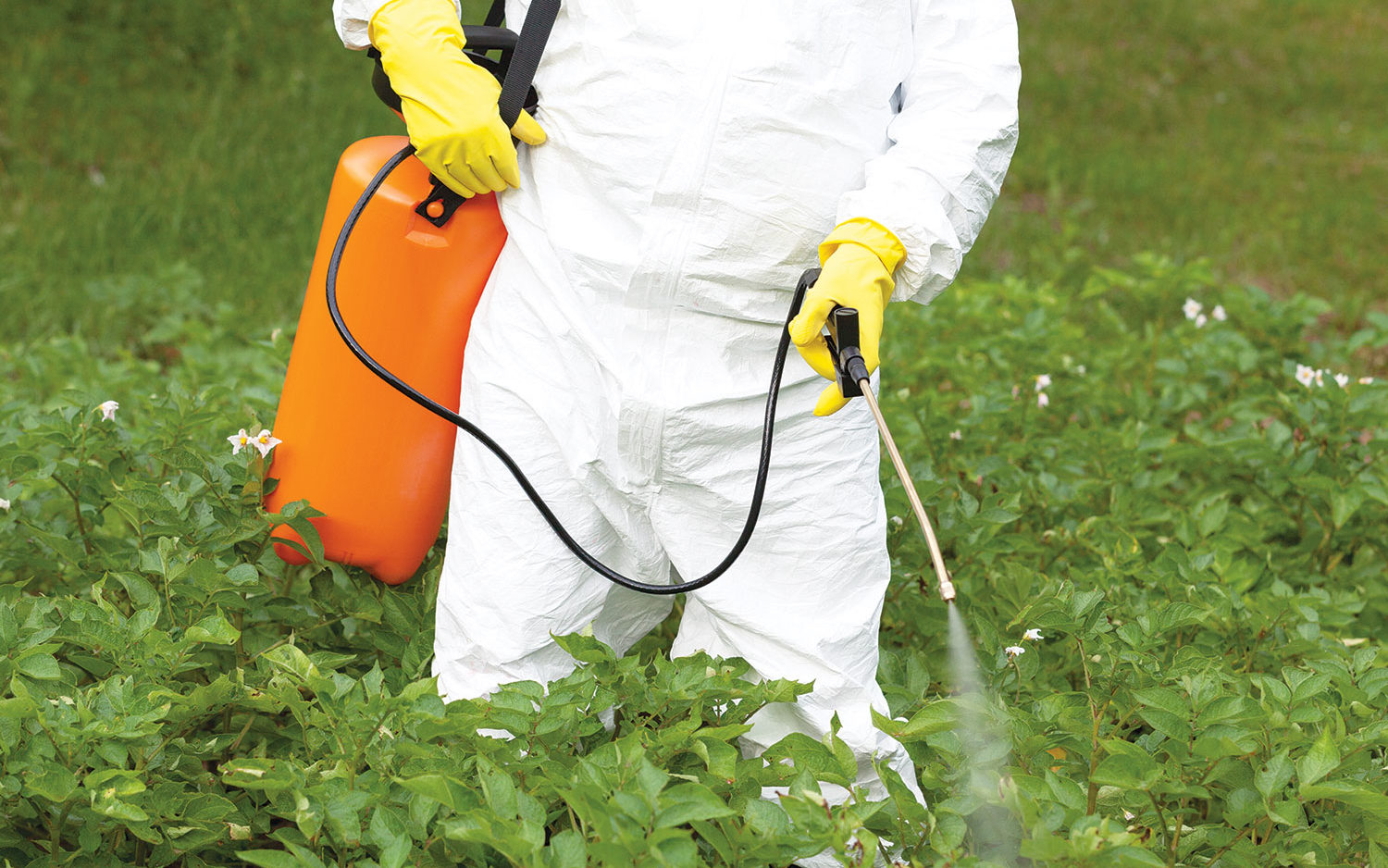 Interdiction de pesticide