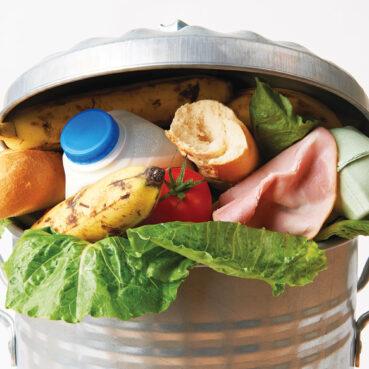 Contre le gaspillage
