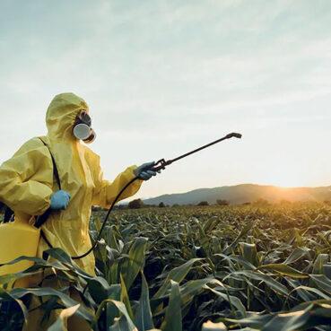 Pesticides : Prendre enfin en compte l'effet cocktail !
